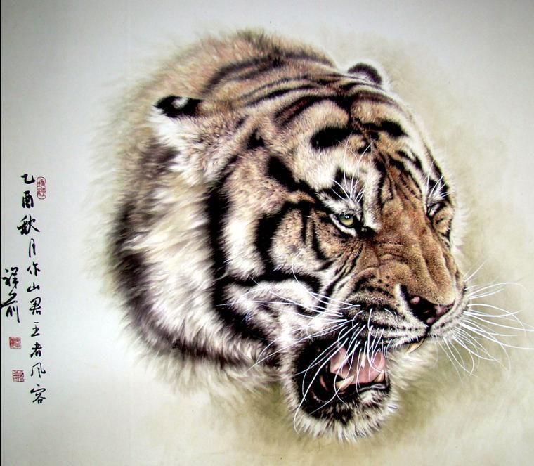 动物 虎 老虎 桌面
