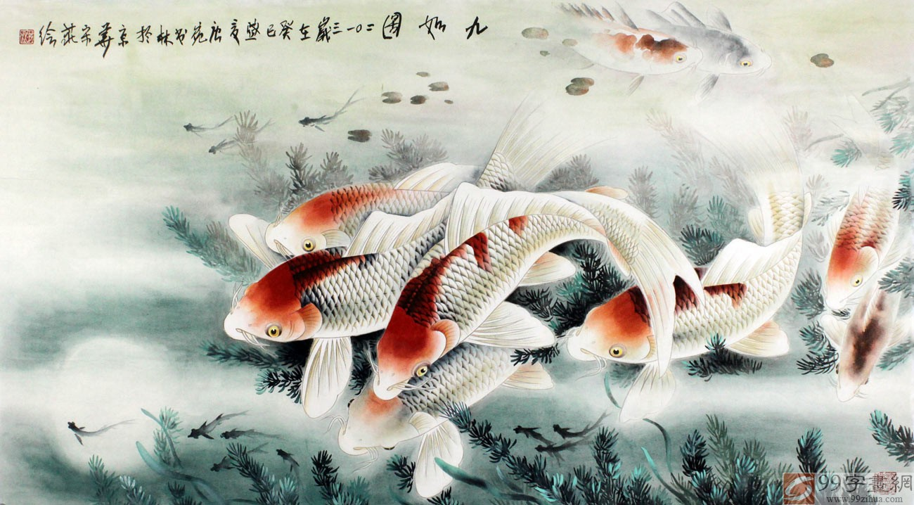 九条活泼可爱的鱼儿各具神态