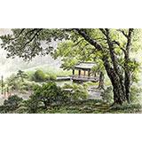朝鲜一级画家 白星燮 作品《木兰峰之夏》