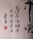【已售】王呈六尺对开主席诗词《咏梅》