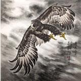 葛化帅六尺斗方雄鹰展翅图《鹰击长空》