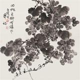 湖南省著名书画家罗华斌 四尺斗方《墨葡萄》