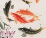 【已售】周升达 三尺《富贵久鱼》 中国画院国画组长(询价)