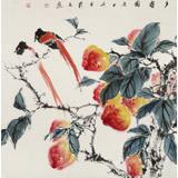 陈薪名 四尺斗方《多寿图》中美协会员第六届全国花鸟画展金奖获得者
