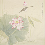 张瑰丽 四尺斗方工笔《一枝水玉无暇》 湖南省美术家协会会员