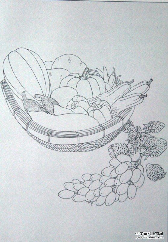 植物可爱简单勾线画