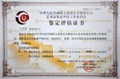 文化部艺术评估证书